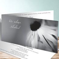 Beerdigung Einladungskarten Bestseller