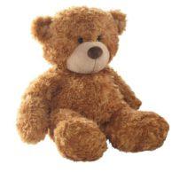 Teddybär Bestseller