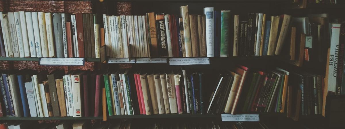 Bücherregal Ratgeber