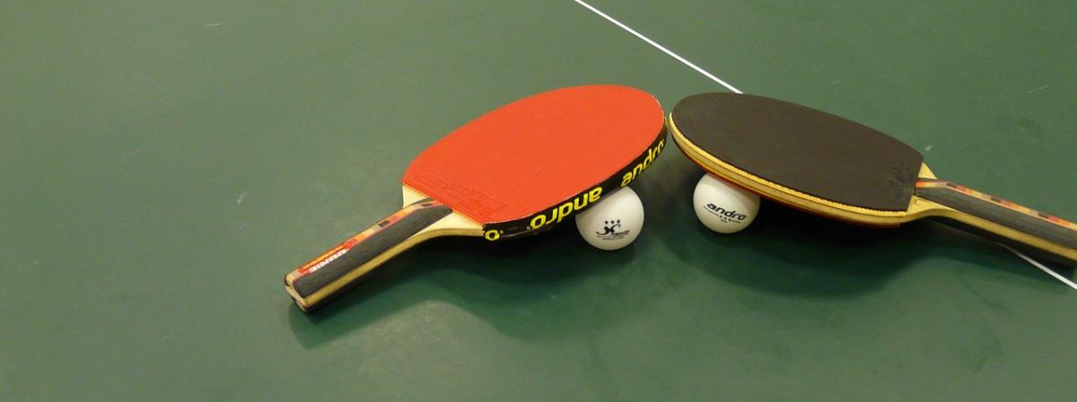 Profi Tischtennisschläger Vergleich