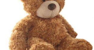 Wagner Teddybär Bestseller