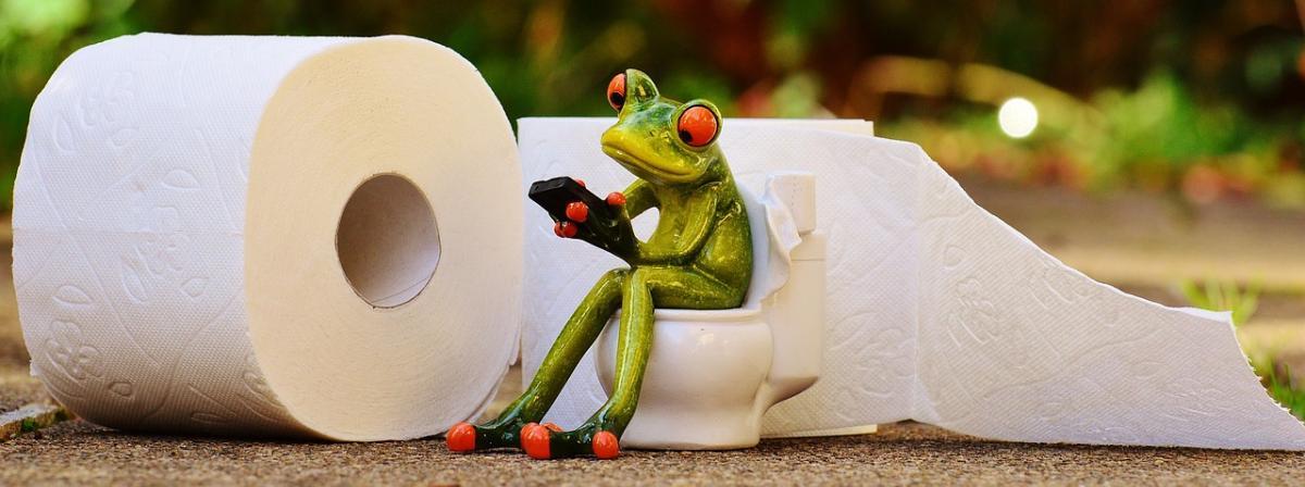 Toilettenpapierhalter Vergleich