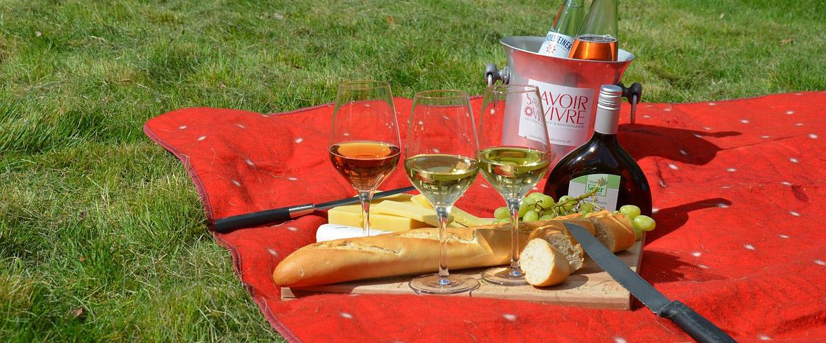 test picknickdecke