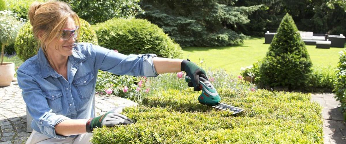 Bosch DIY Akku Gras- und Strauchschere