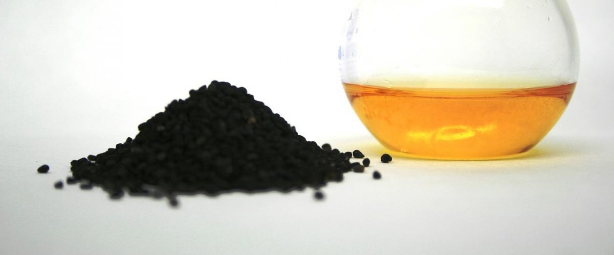Schwarzkümmelöl Vergleich