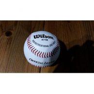 Baseball Bestseller
