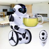 RC Roboter Bestseller