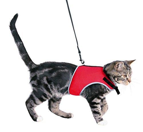 XCat Katzen-Garnitur