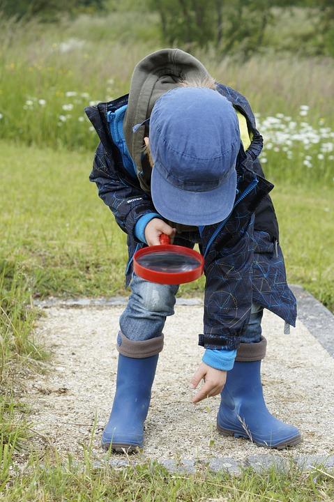 Die besten Lupen für Kinder im Vergleich. Informationen und Tipps gibt es auch.
