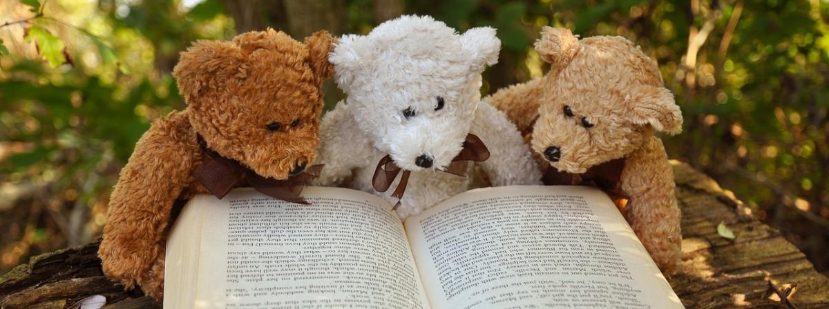 Teddybär Ratgeber