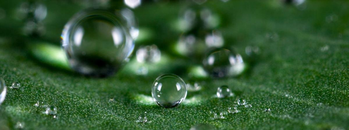 Regenfasspumpe Vergleich