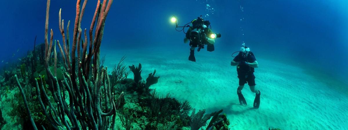 Unterwasserbeleuchtung Vergleich