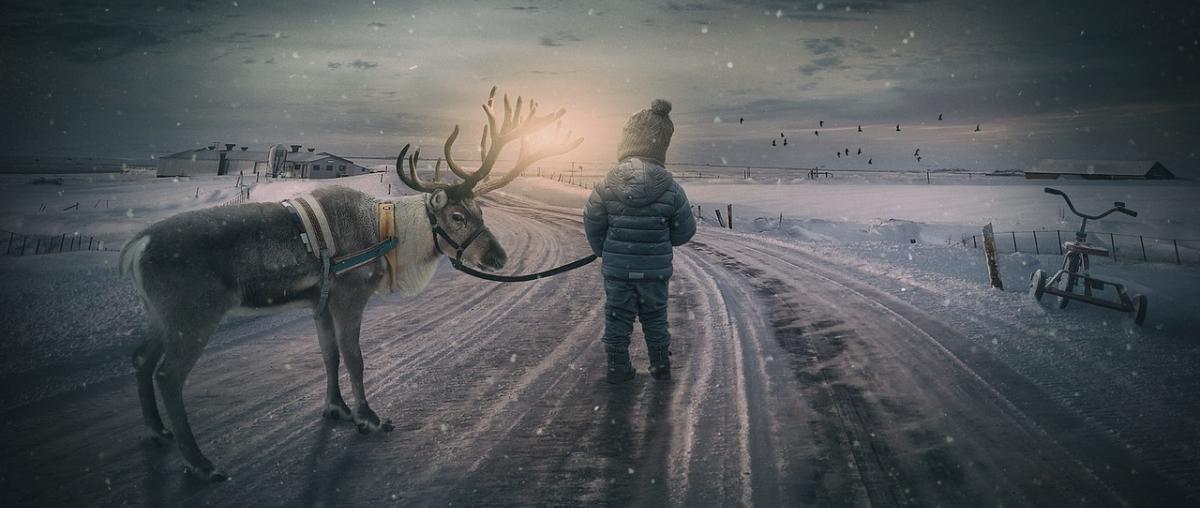 Jungen Winterjacke Vergleich