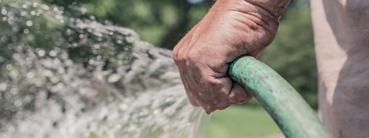 Bewässerungsschlauch Ratgeber