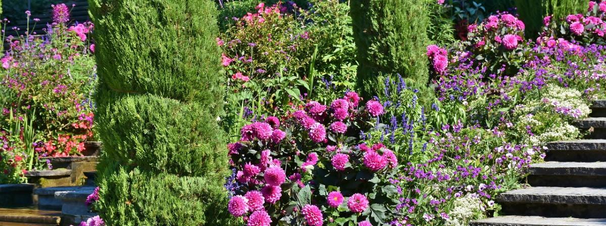Blumentreppe Holz Ratgeber